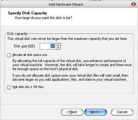 VMware Disk Capacity Allocation